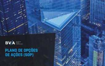 BVA – eBook Stock Options 2021